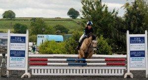 Little star Miss Sally, for rehoming: http://horses4homes.net/portal/en/details/miss-sally-23757