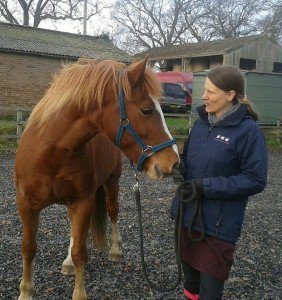 Photo: Suzanne Rogers, Certified Equine Behaviour Consultant.  www.learningaboutanimals.co.uk